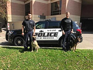 Rochester MN Police K9 Unit Facebook